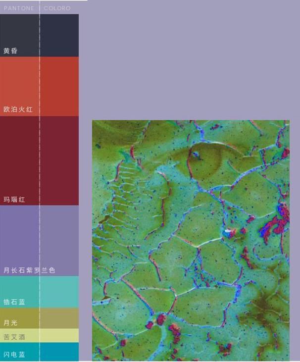 2019/20秋冬女装色彩趋势